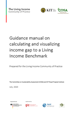 Guidance manual on calculating and visualising the income gap