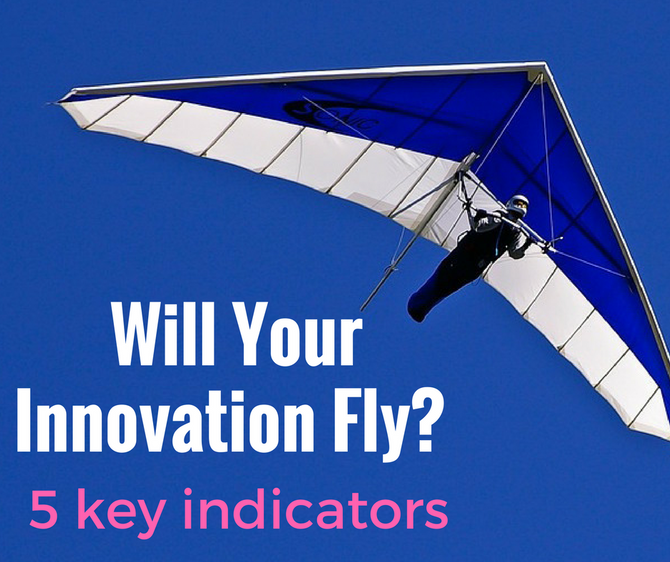 Will Your Innovation Fly?