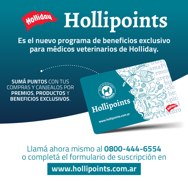 HTML1-Hollipoints.png