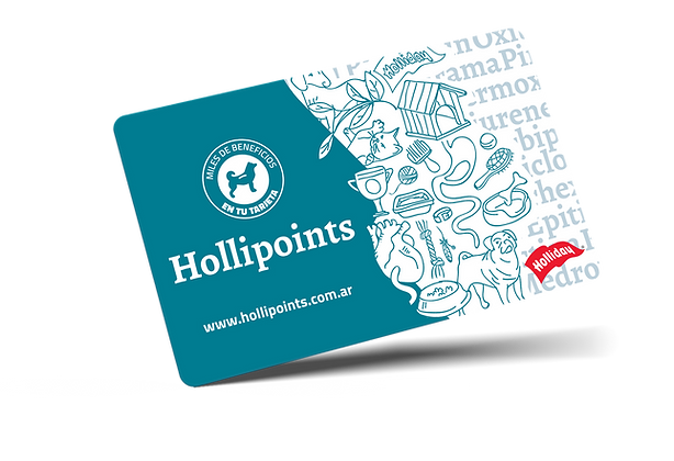 HollipointsCard.png