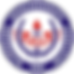 MSA Logo no background.png
