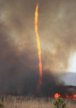 California Fire Tornado.jpg
