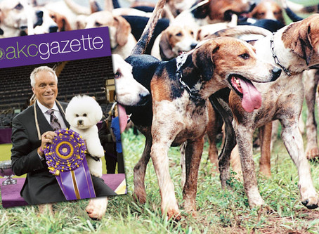 AKC Feb 2018 Gazette