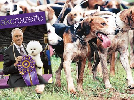 AKC Feb 2018 Gazette
