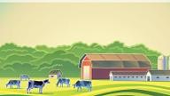 Saiba como declarar o imposto sobre propriedade rural