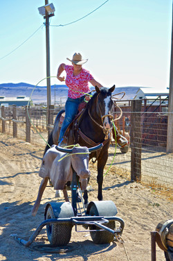 Cathie & Bird_Roping Heel O Matic 5 - Kelly B Photo