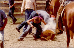 Cathie Branding a Calf at Army Camp