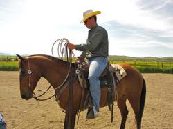 Branding On Sale Horses-Hiway Corrals  5-1-06 018