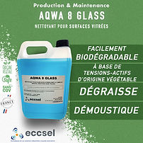 AQWA 8 GLASS copie.jpg