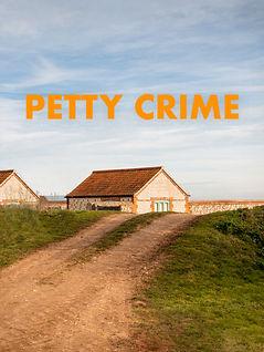 New Film Poster  Petty Crime.jpg