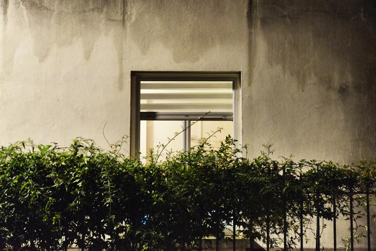 _CIT0942_Snapseed_Snapseed.jpg