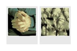 mains+papy.jpg