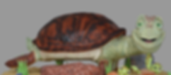 turtle front.png