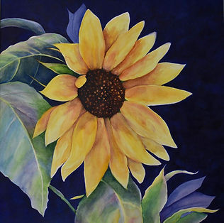 2 - Sunflower by Candace OBrien - waterc