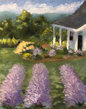 4 - Lavender Farm by Diane Thompson.jpg