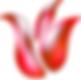 Edam Credit Union Logo