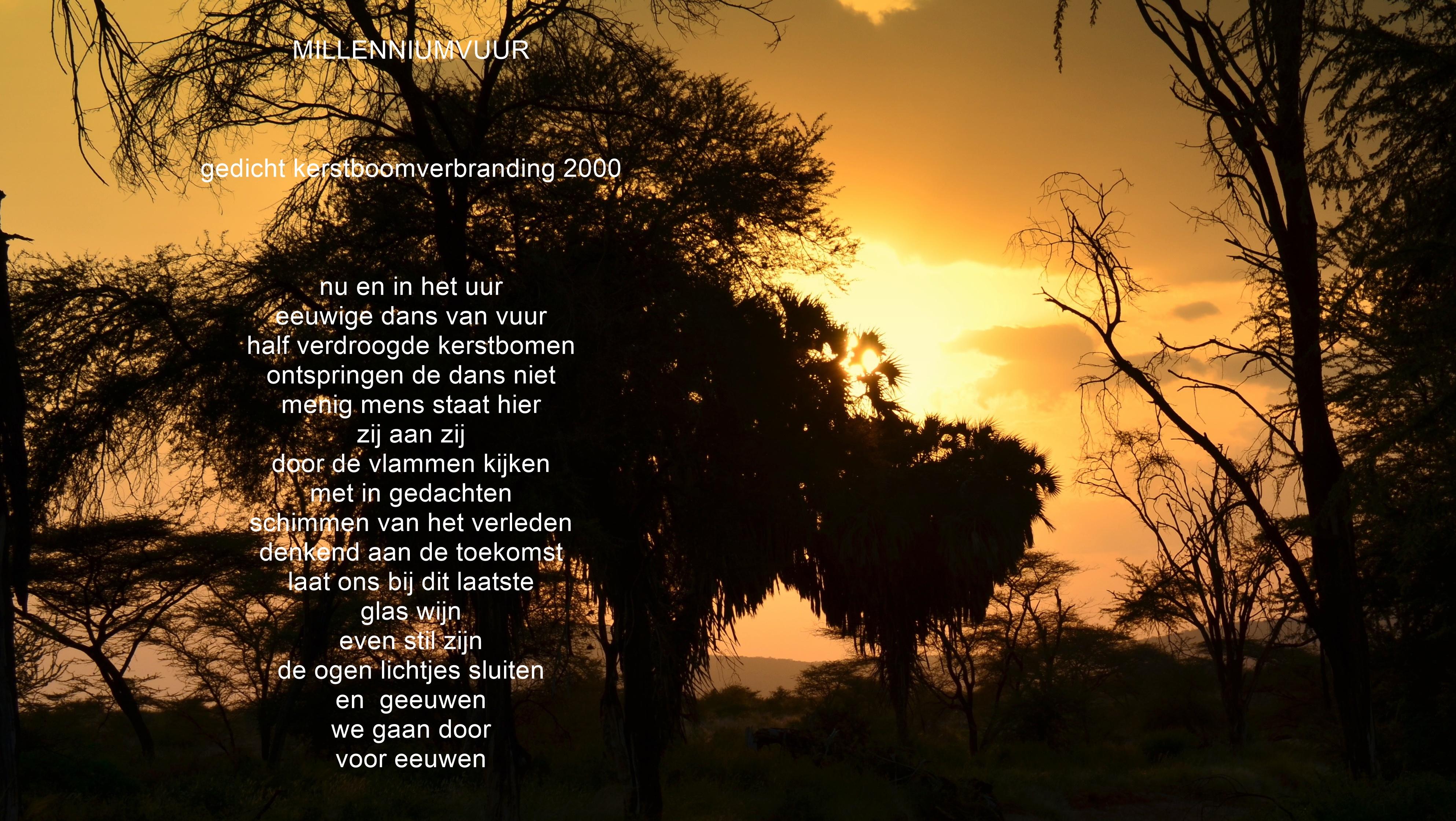 Gedichten Herwin