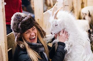 Goat-farm-Hvataferðir.jpg