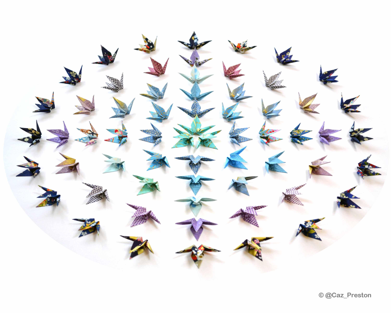 Caroline Preston Origami Artist