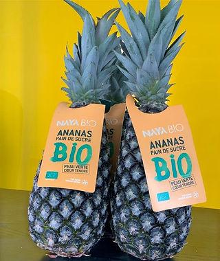Ananas%20PDS_edited.jpg