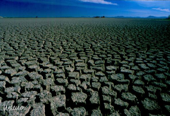 Años de Sequía, Presa Abelardo L. Rodríguez, Hermosillo