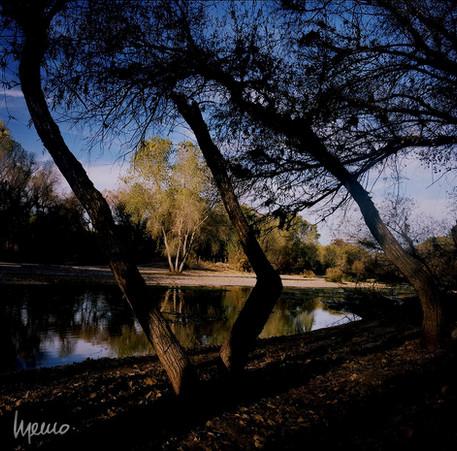 Río Magdalena a su paso por Terrenate, Imuris