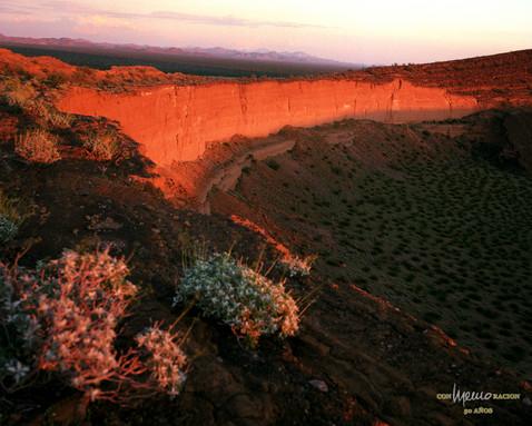 """Pared oriente del cráter """"El Colorado"""" en """"El Pinacate"""""""