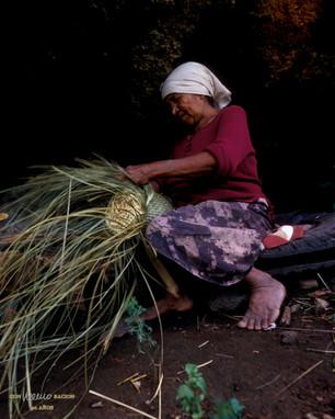 Mujer de la etnia Pima tejiendo una jimara (molde de queso) en Yécora