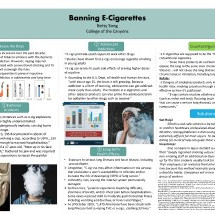 Song, Betty - Banning E-Cigare