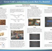 Raboubi, Mona - Green Gold's Antioxidant