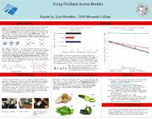 Ly Kaulen and Luis Melendez - Axing-Oxidant