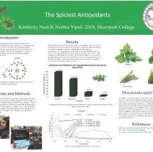 Vipul, Nishka - The Spiciest Antioxidant