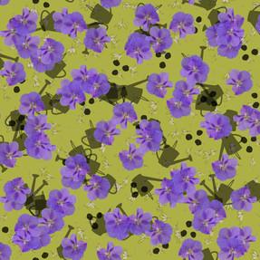 Hibiscus August Olive 3000.jpg
