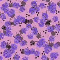 Hibiscus August Orchid 3000.jpg