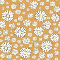 Daisy goldeneye.jpg