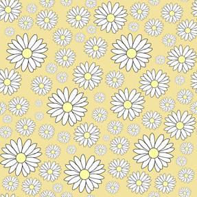 Daisy cream