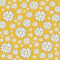 Daisy lime.jpg