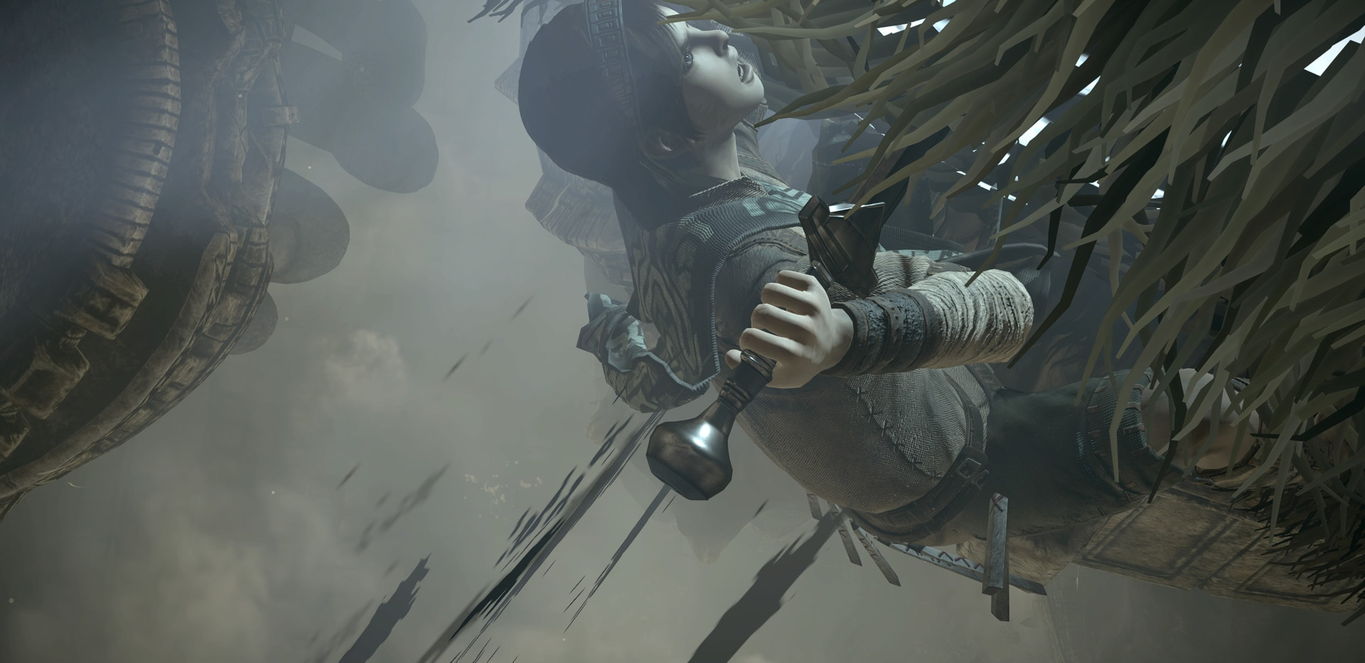 SHADOW OF THE COLOSSUS_20180210181945.jp
