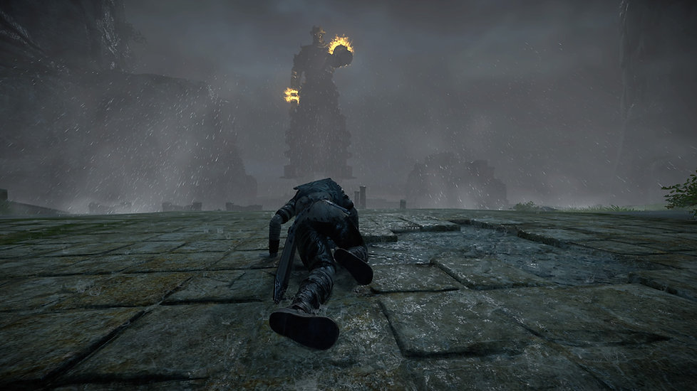 SHADOW OF THE COLOSSUS_20180213232543.jp