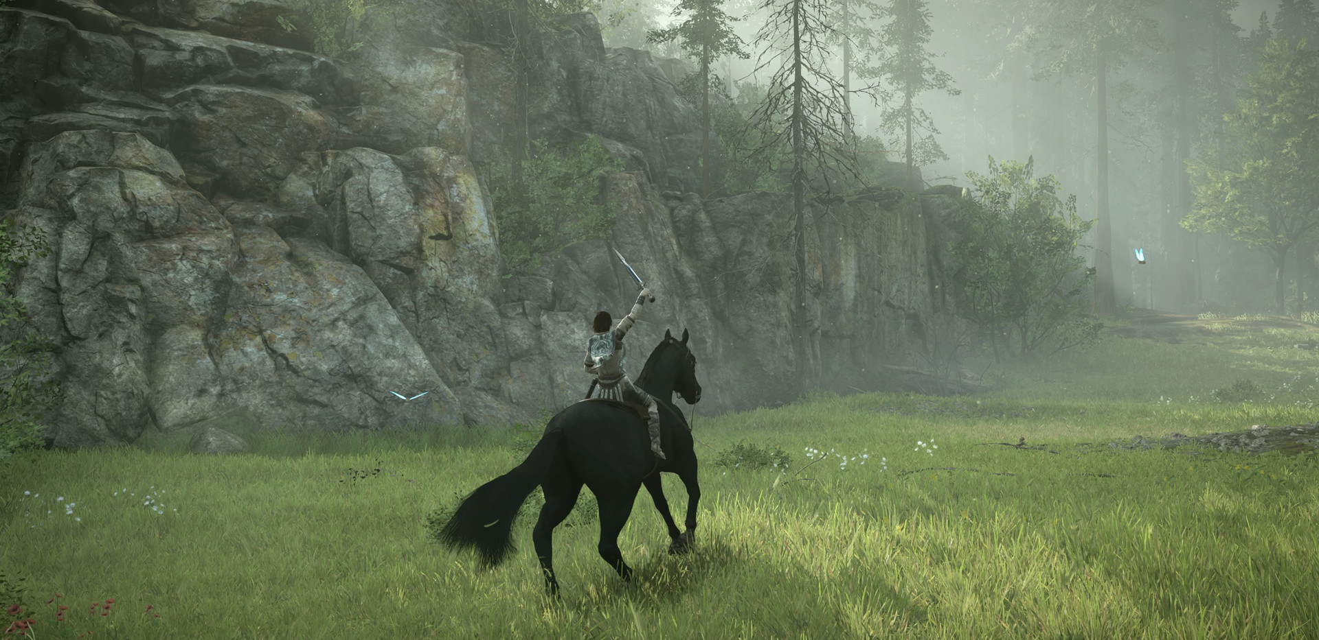 SHADOW OF THE COLOSSUS_20180210175344.jp