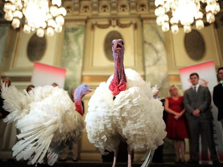 Why do presidents pardon turkeys?