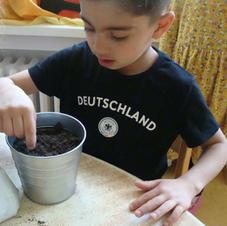 Wir pflanzen Gemüse