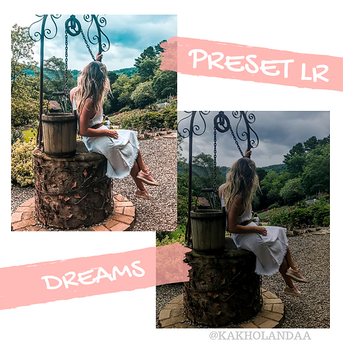 PRESET DREAMS