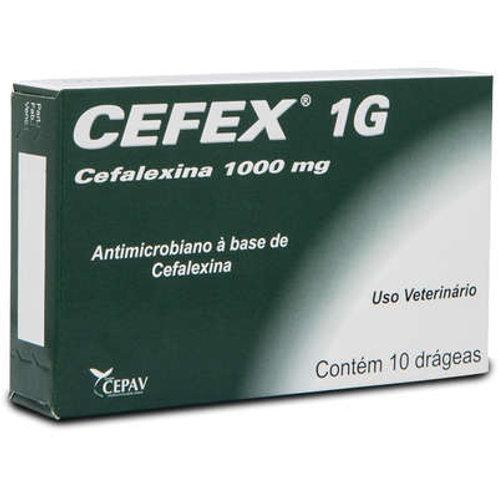 Antimicrobiano Cepav Cefex 1 g