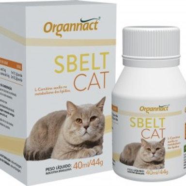 SBELT CAT