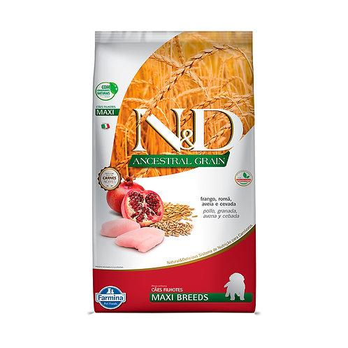 N&D Ancestral Grain para Cães Filhotes de Raças Grandes Sabor Frango - 10,1kg