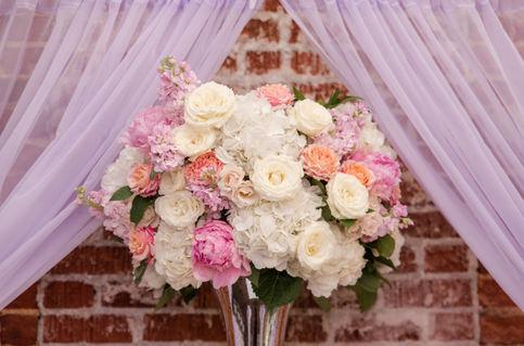 Michelle & Charles Micro Wedding 4.jpg
