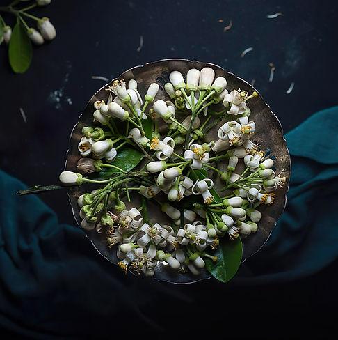 pomelo-blossom-4808622_1280.jpg