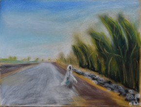 On the road to Gondar, Ethiopia (2019)