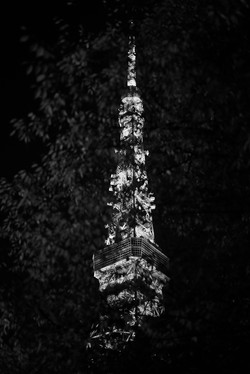 monochrome tower , 2018